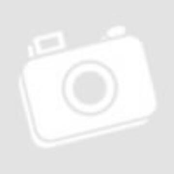 Ezüst fényképkeret - elefánttal, kék (9x13 cm)
